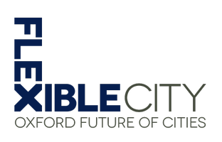 Future of Cities Distinguished Lecture Series 2013: Paul Jenkins