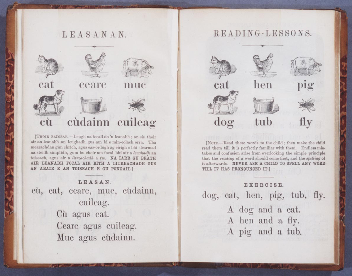 Image of a Gaelic Primer