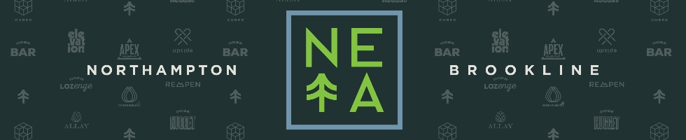 New England Treatment Access (NETA)