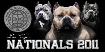 American Bully Kennel Club Events | Eventbrite