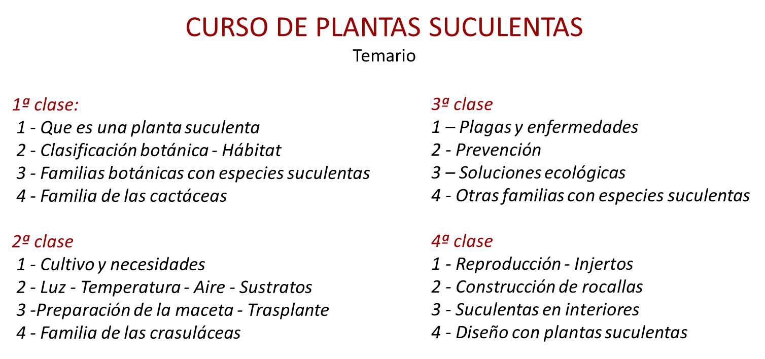 Curso de verano cactus y suculentas entradas jue 04 02 for Curso cactus y suculentas