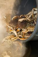 Sausalito Portuguese Hall Annual Cracked Crab Dinner
