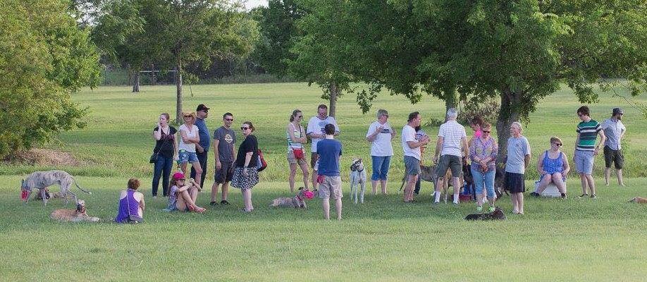AGA at Dogboys Dog Ranch
