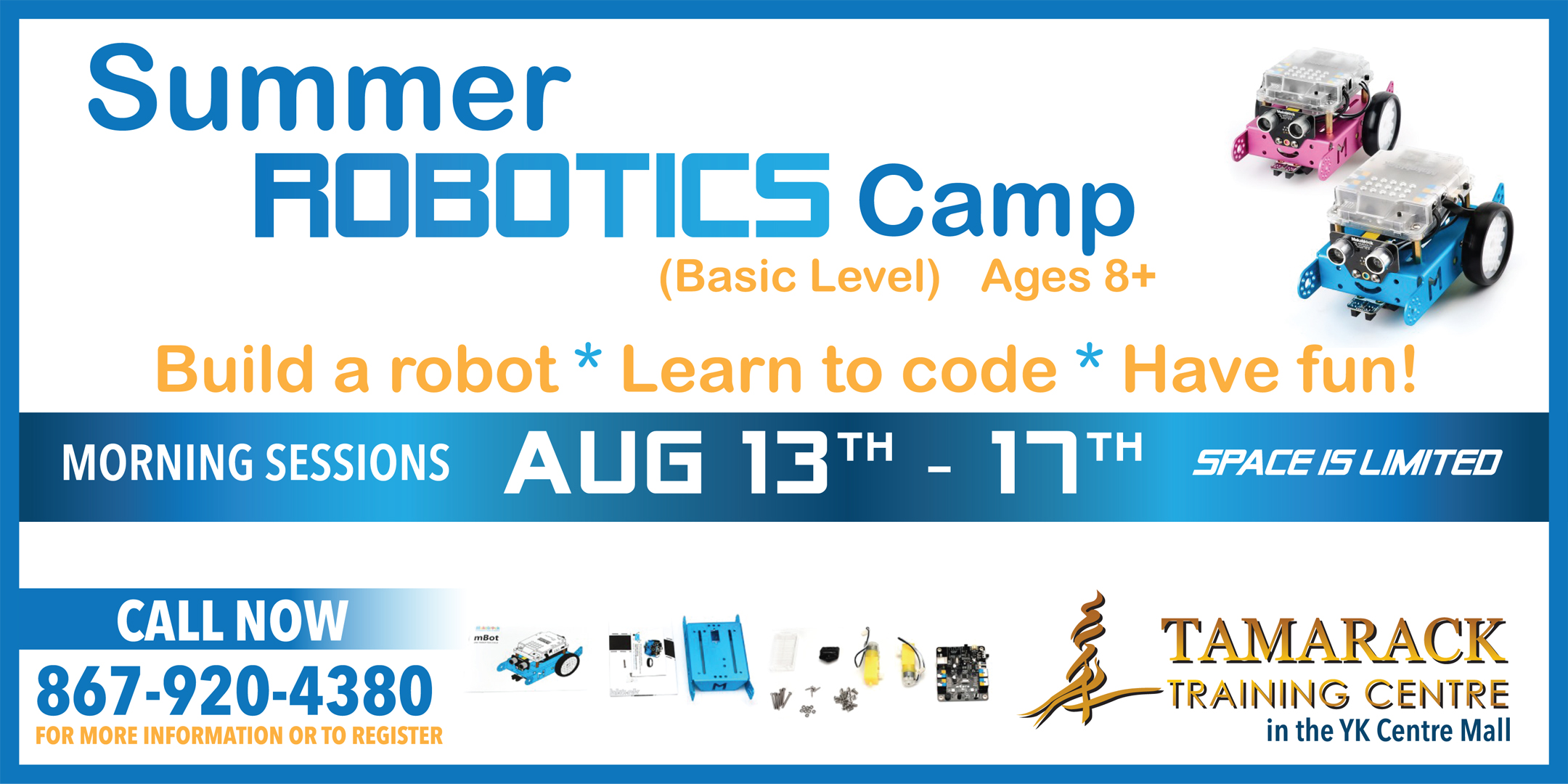 Basic Robotics Youth Camp August 13