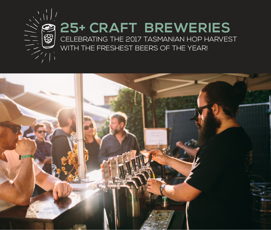 25+ Craft Breweries