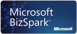 Biz Spark Logo