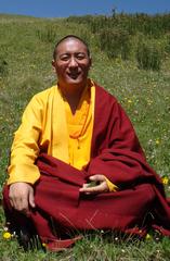 Wujin Rinpoche