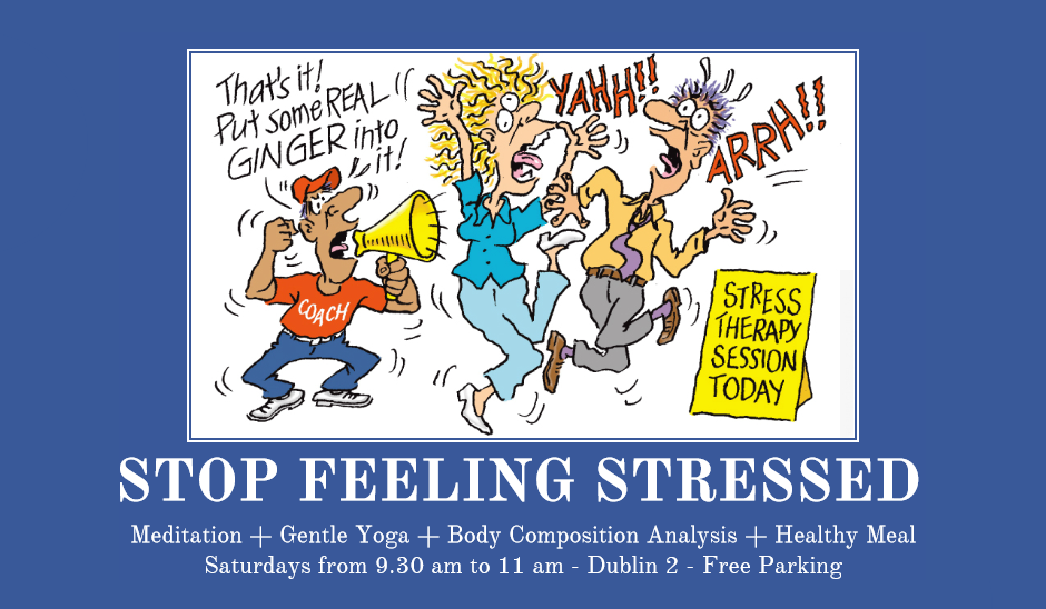 Stop Feeling Stressed Workshop: Yoga, Meditation, Healthy Meal, Body Composition Analysis