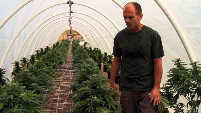 Master Grower Mike Boutin