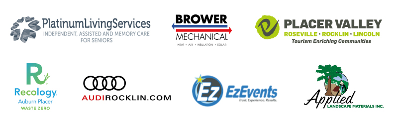 2017 VIP Sponsors