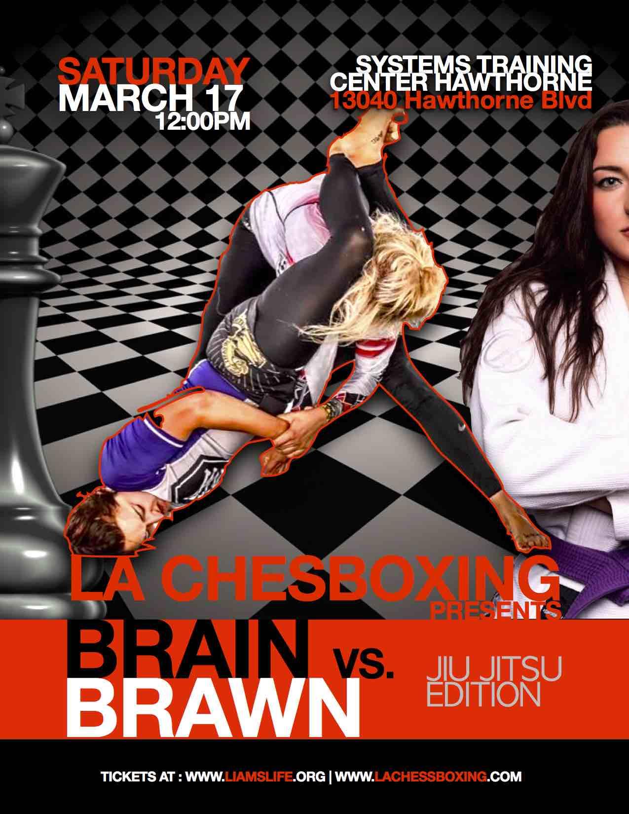 Chess Jiu Jitsu Flier