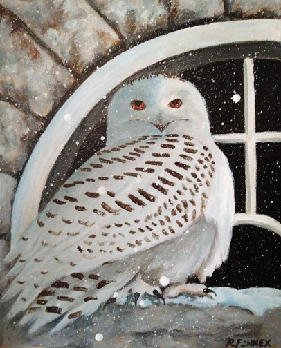 Snowy Owl at Carroll Baldwin Hall by Roxana Sinex