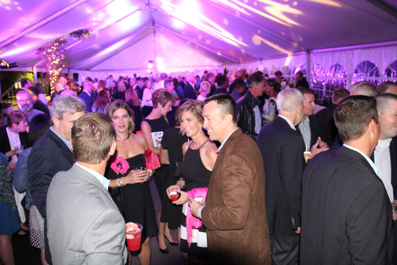 Inside the Tent at The Garden Party 2015