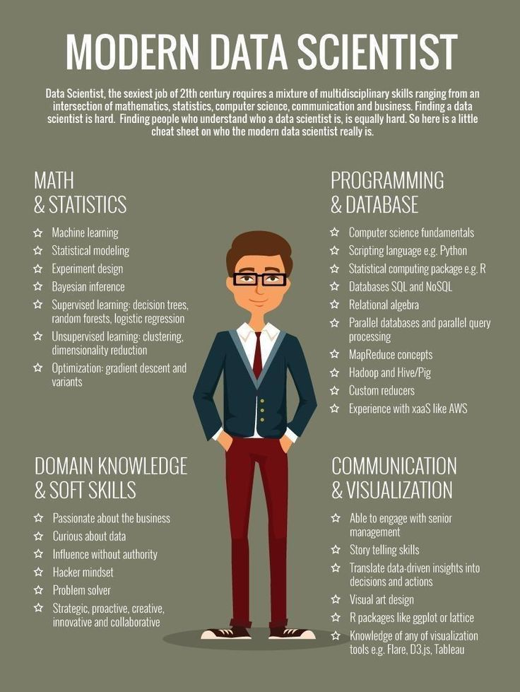Infographic Demonstarting the Skills of a Data Scientist