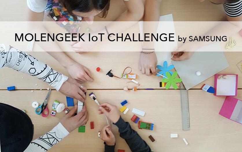 MolenGeek IoT Challenge