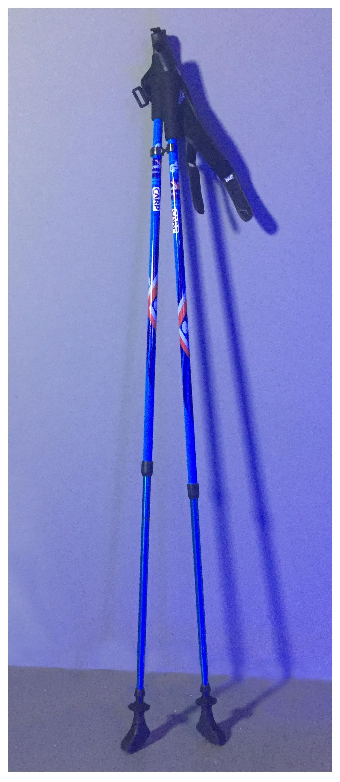Nordic Walking Poles!