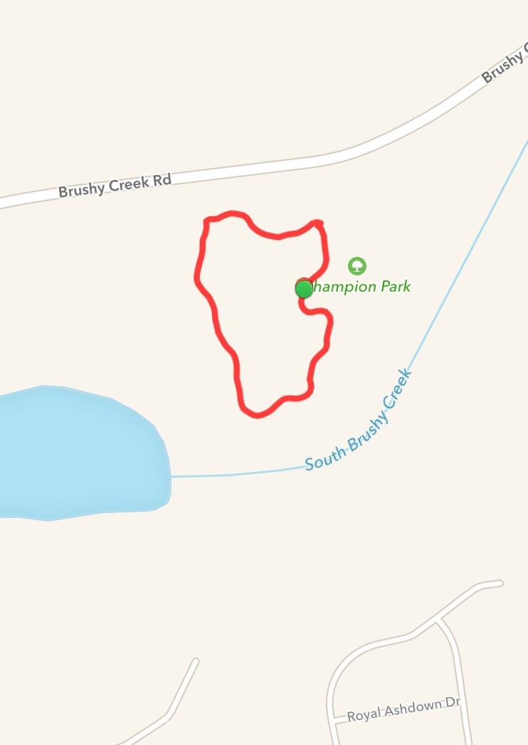 Map My Run Dog Walk