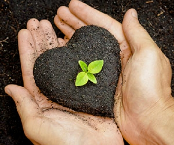 soil love
