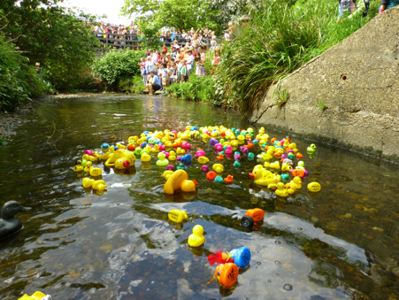 Qwaggy Duck Race