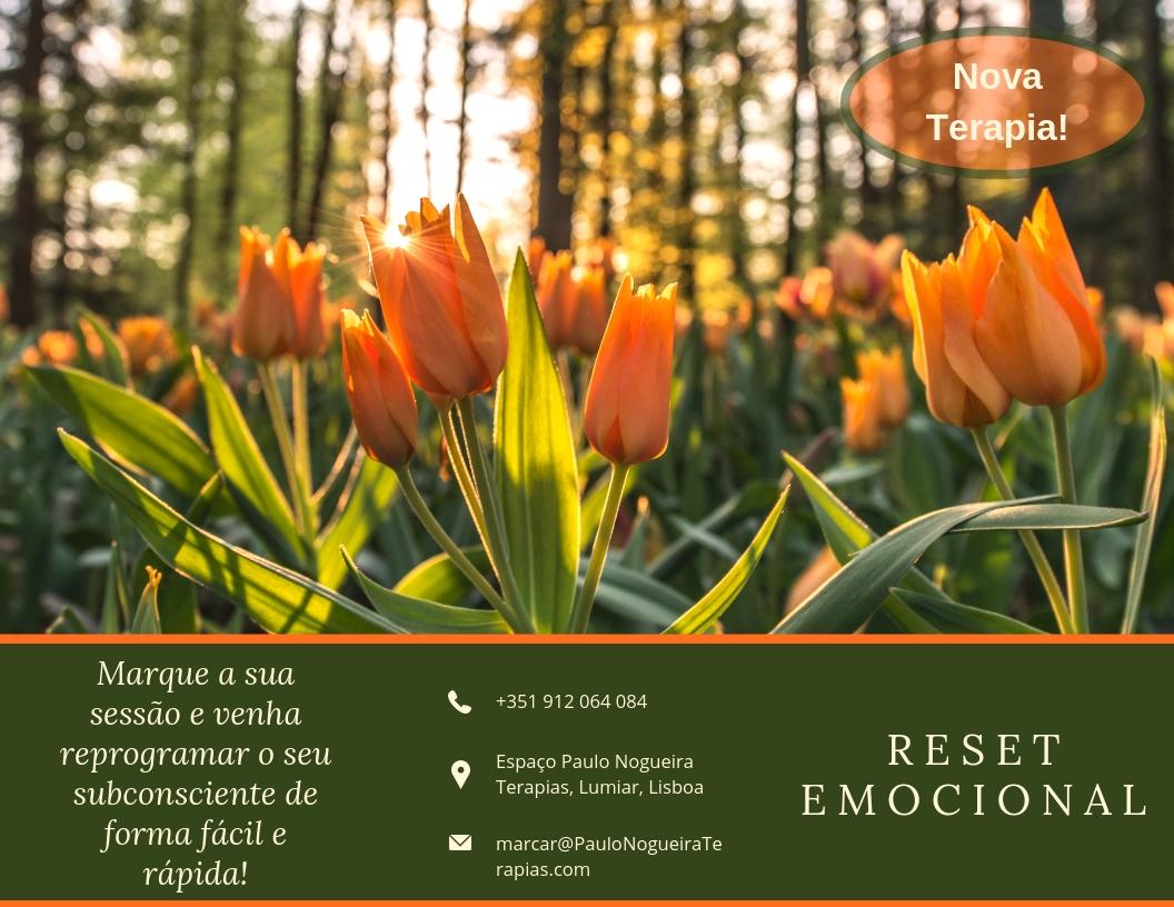 Reset Emocional