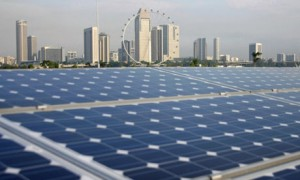 Brixton Energy Panels