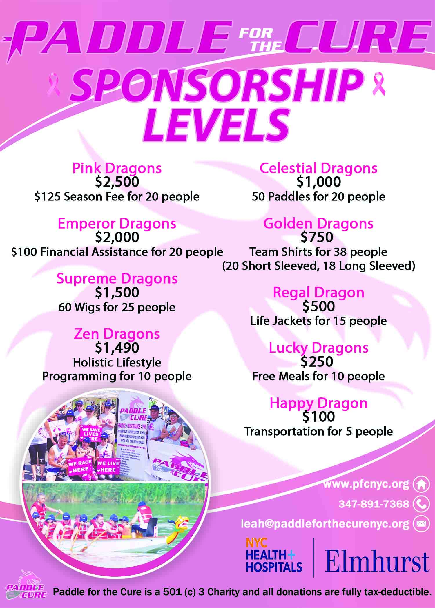 Paddle for the Cure Sponsorship Level