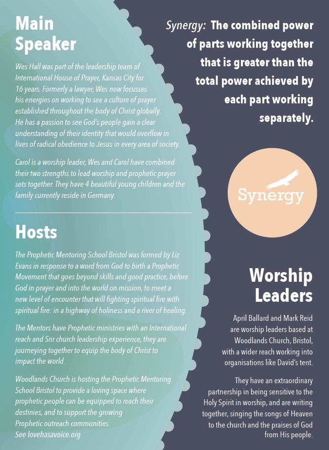 Synergy Leaflet Back