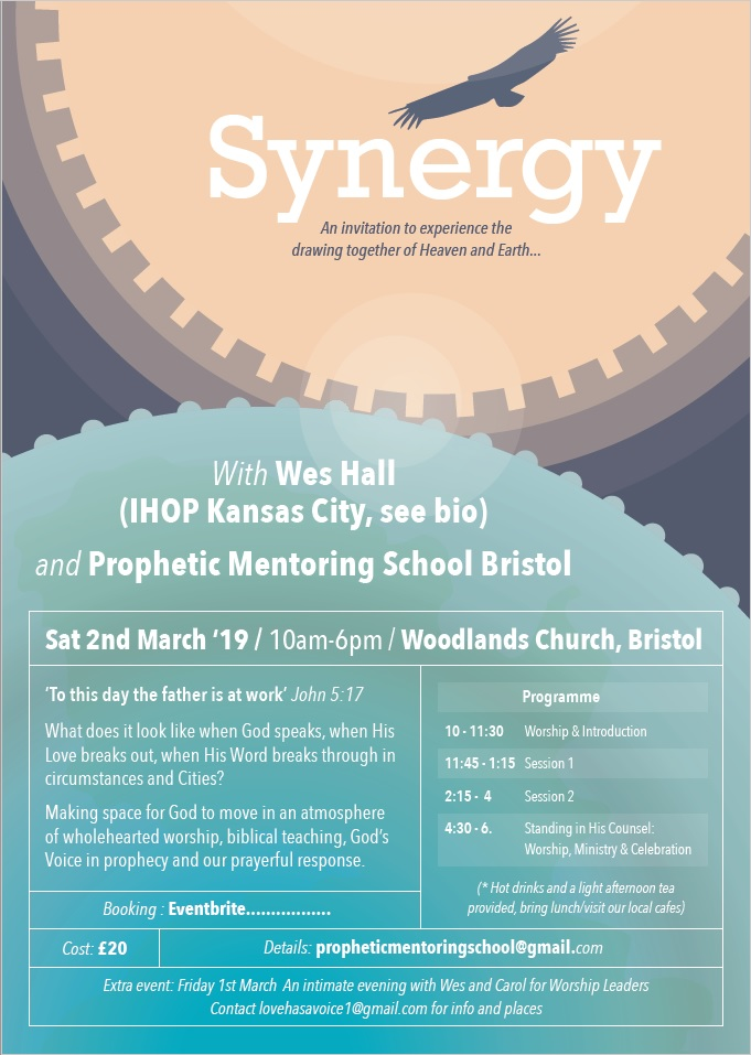 Synergy Leaflet Front
