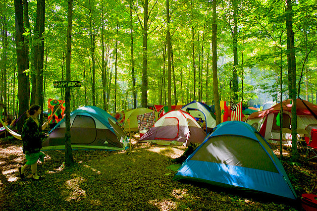 Photo of Tent Camping in the Heron Woods