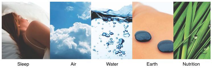 Essentials for Wellness