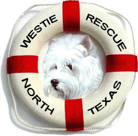 WRNT logo