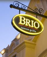 Biz To Biz Networking at Brio - Bring a Guest for Free