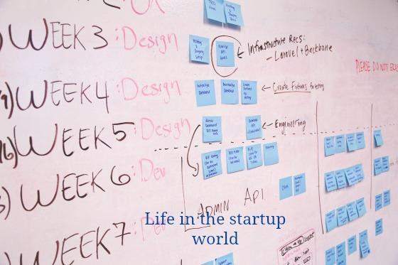 Startup Schedule