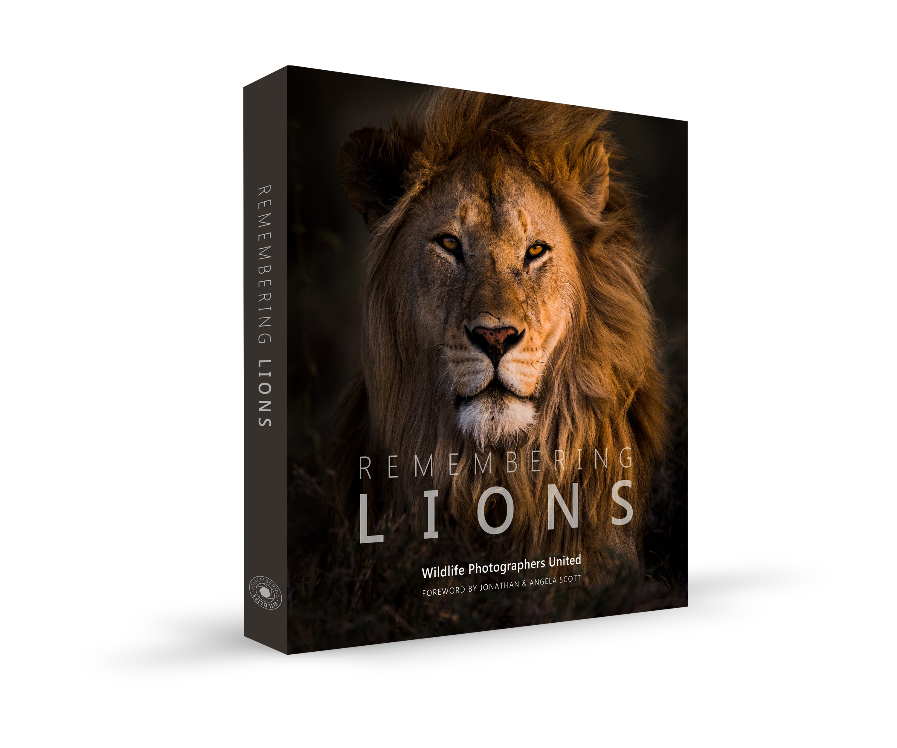 Remembering Lions book cover