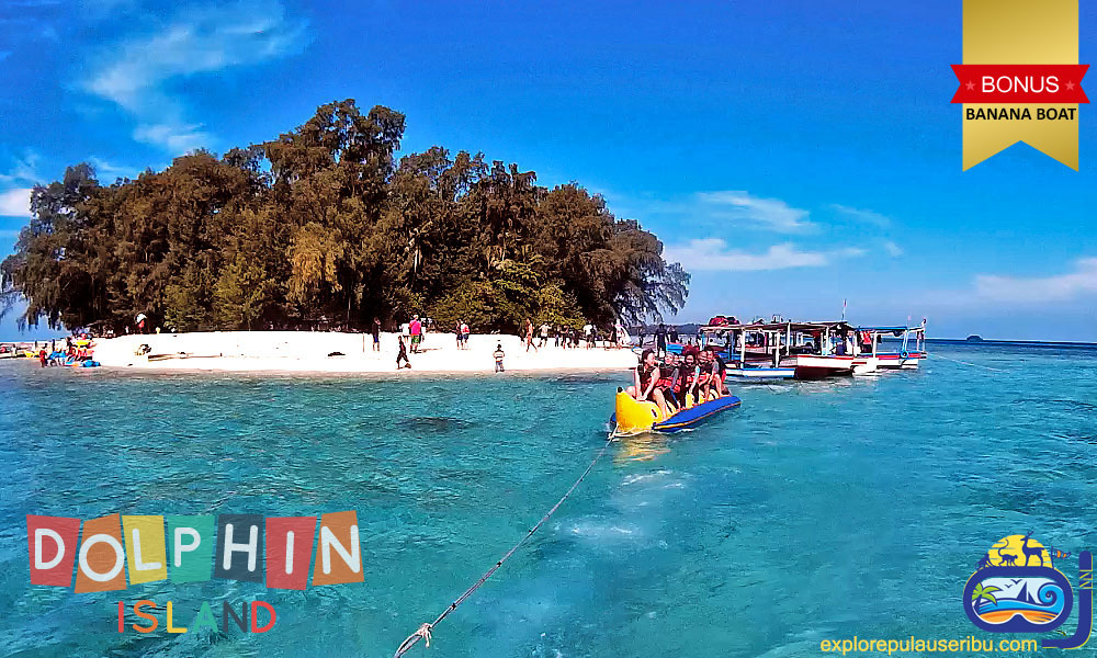 paket wisata pulau kelapa dan jelajah pulau dolphin