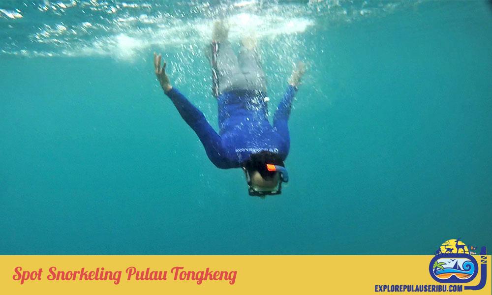 spot snorkeling pulau tongkeng kepulauan seribu
