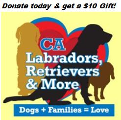 California Labradors, Retrievers & More Rescue