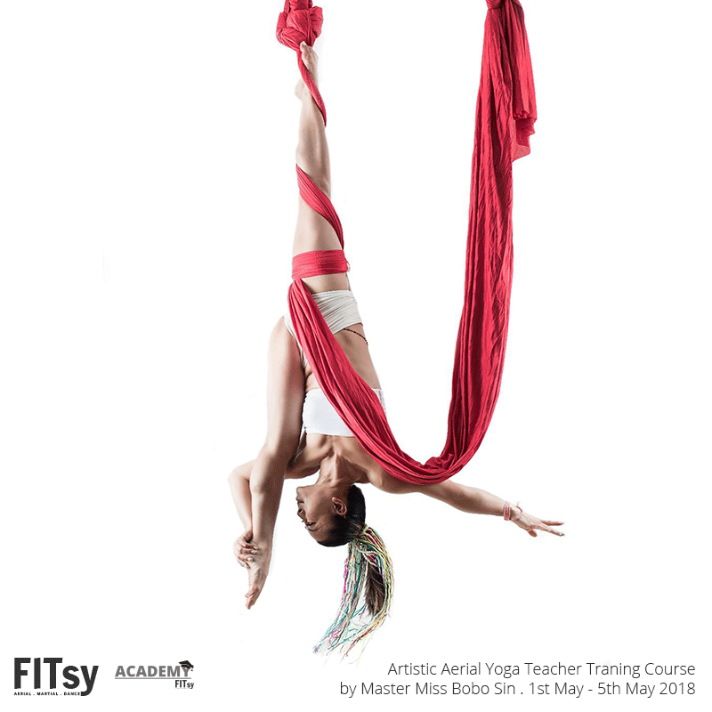Artistic Aerial Yoga Instructor