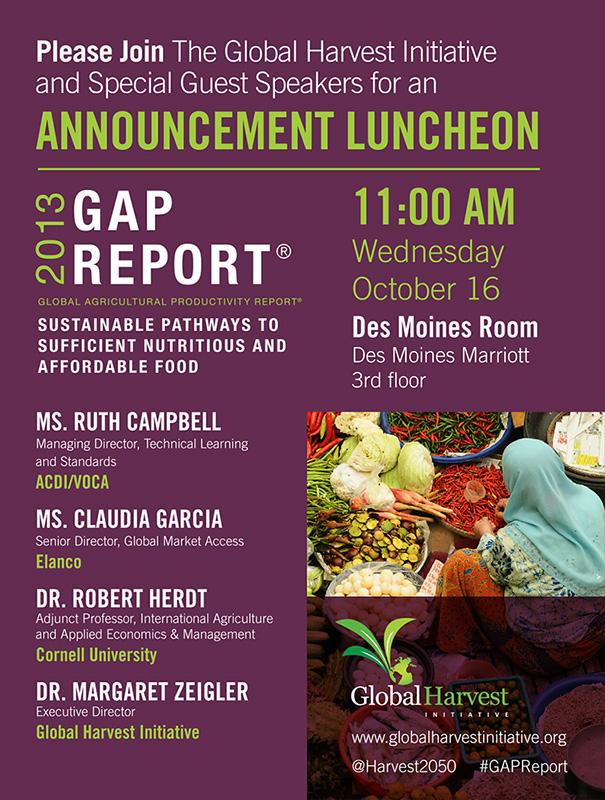 2013 GAP Report Flyer
