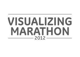 Visualizing Marathon 2012: New Delhi