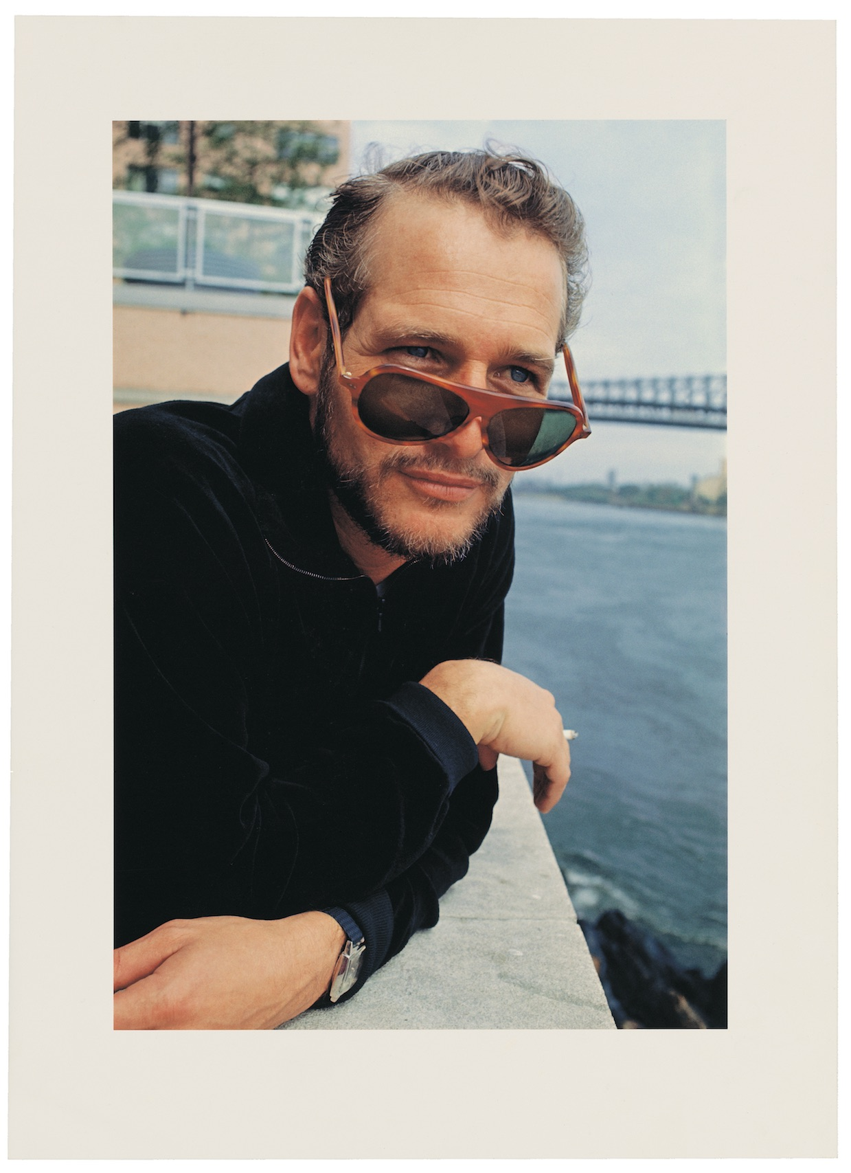 Paul Newman by Angela Williams