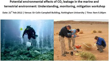 Potential environmental effects of CO2 leakage in the...