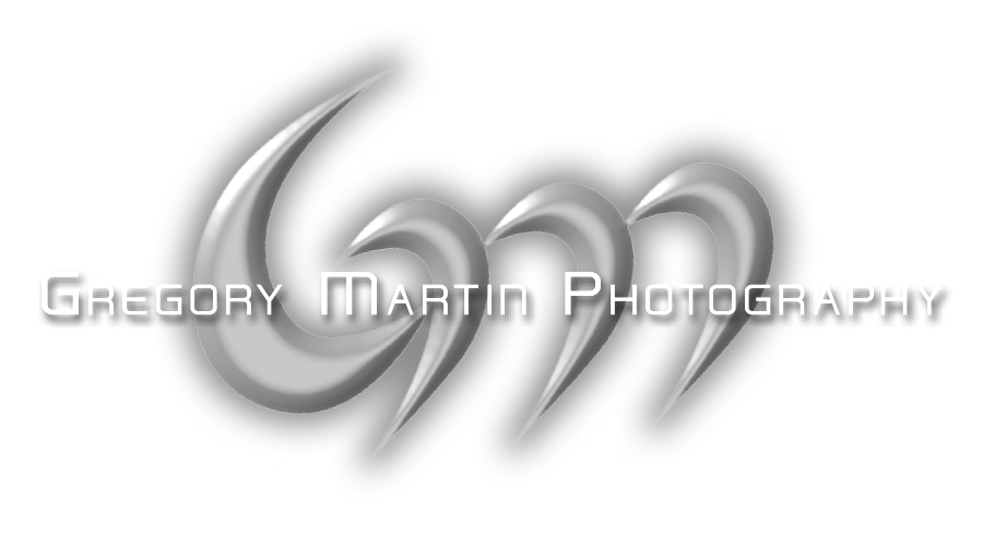 Gregory Martin