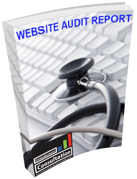 Website Audit Report 2