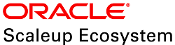 Oracle Scaleup Ecosystem: A Non-Residential Acceleration Program for Startups