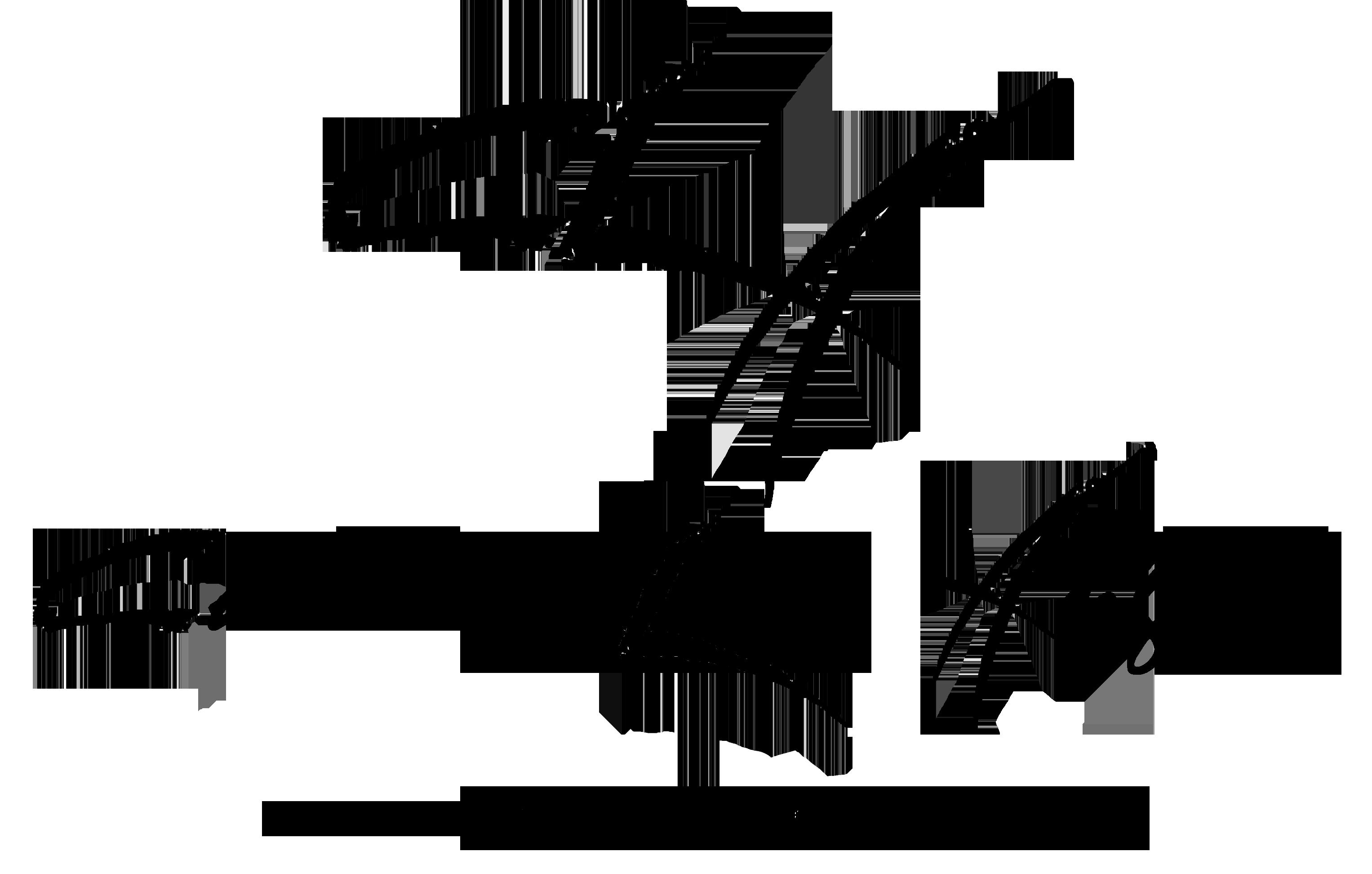 Carolina Lady Anglers Logo