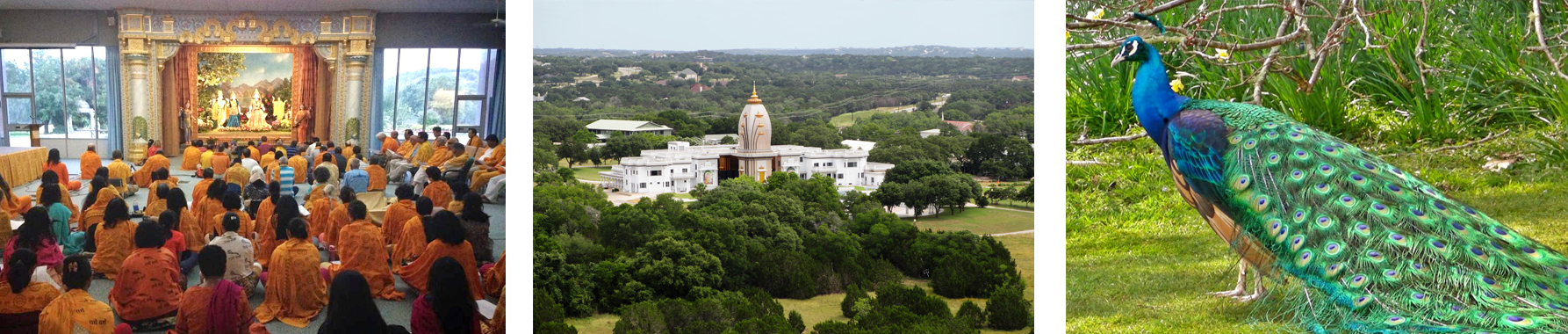 Texas Yoga Retreat Ashram