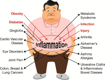inflammation response to the body When a wound swells up, turns red and hurts, it may be a sign of inflammation inflammation is – very generally speaking – the body's immune system's response to stimulus this can be bacteria colonizing a wound or a splinter piercing your finger, for example inflammation happens when the immune.