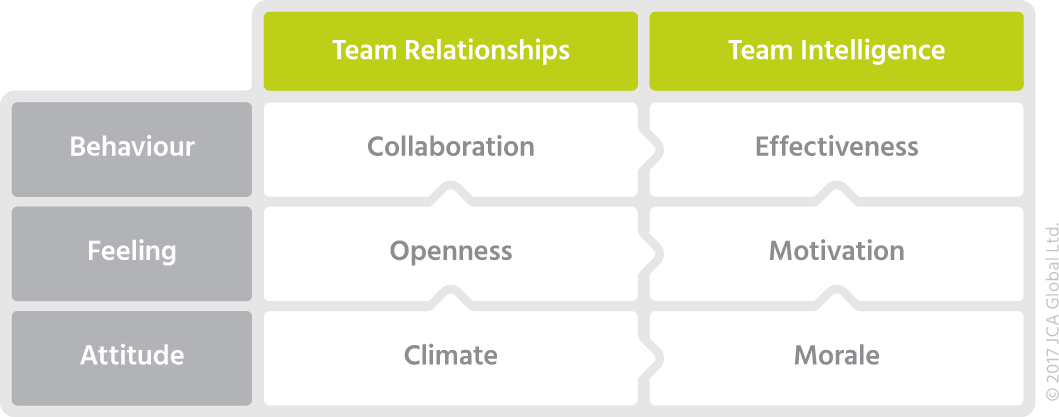 Team EI Framework