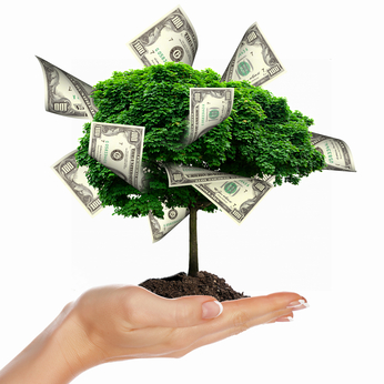 Grow Your Business money tree